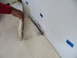 wall leak, mold behind baseboard, warped baseboard