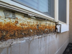 rust behind eifs 2